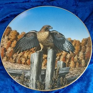 Vintage Hamilton Collection Red-tail Hawk plate